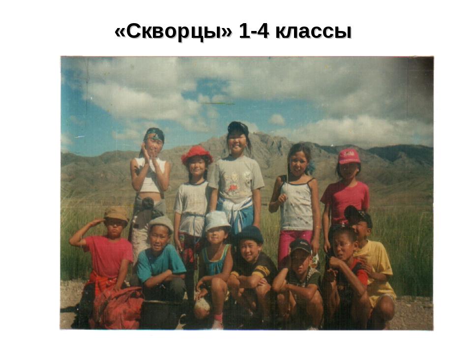 «Скворцы» 1-4 классы