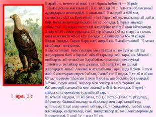 Қарақұс, немесеақиық (лат.Aquila heliaca) —бүркіт тұқымдасынажататынсұңқа
