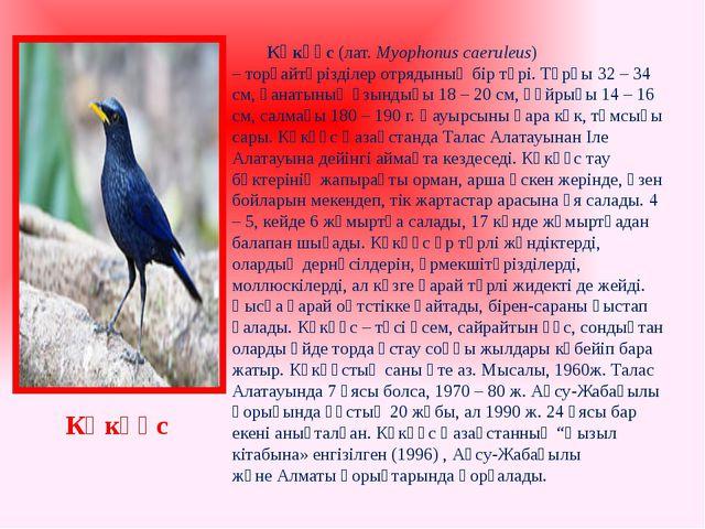 Көкқұс(лат.Myophonus caeruleus) –торғайтәрізділер отрядының бір түрі. Тұр...