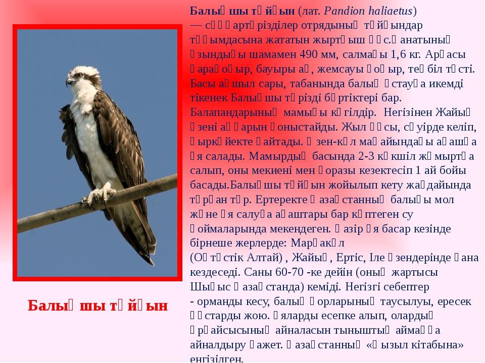 Балықшы тұйғын(лат. Pandion haliaetus) —сұңқартәрізділер отрядыныңтұйғында...