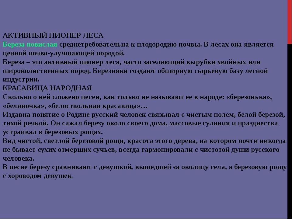 АКТИВНЫЙ ПИОНЕР ЛЕСА Береза повислая среднетребовательна к плодородию почвы....