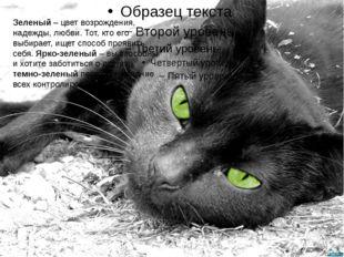 Зеленый – цвет возрождения, надежды, любви. Тот, кто его выбирает, ищет спос