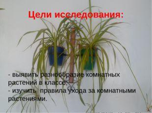 Цели исследования: - выявить разнообразие комнатных растений в классе; - изуч