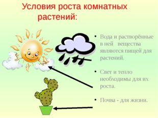 Условия роста комнатных растений: Вода и растворённые в ней вещества являютс