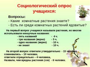 Социологический опрос учащихся:  Вопросы: - Какие комнатные растения знаете?