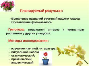 Планируемый результат: Выявление названий растений нашего класса; Составлени