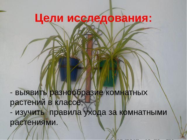 Цели исследования: - выявить разнообразие комнатных растений в классе; - изуч...