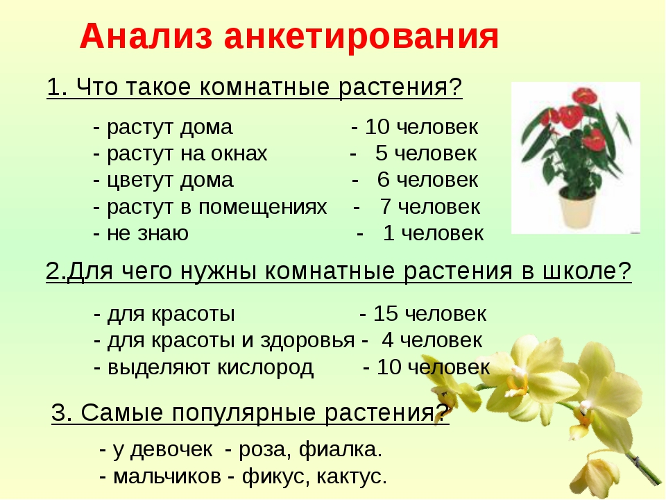 Анализ анкетирования 1. Что такое комнатные растения? - растут дома - 10 чел...