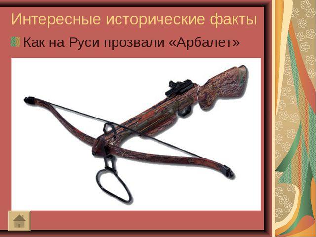 Интересные исторические факты Как на Руси прозвали «Арбалет»
