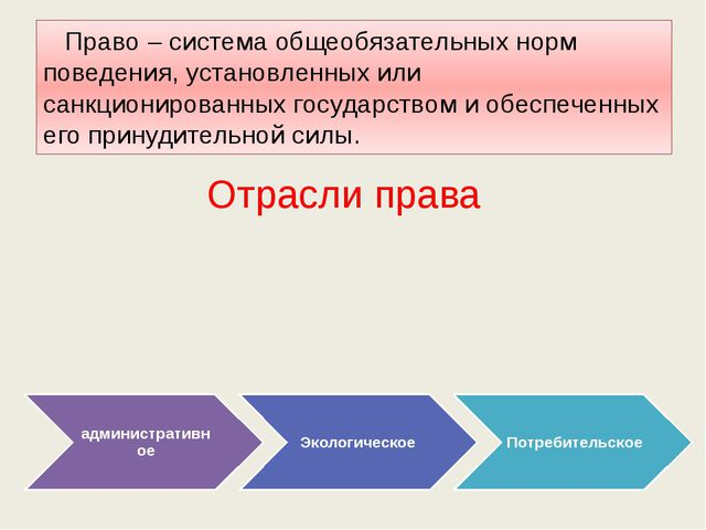 Право – система общеобязательных норм поведения, установленных или санкциони...