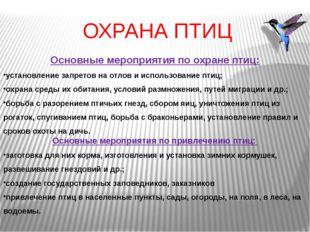 ОХРАНА ПТИЦ Основные мероприятия по охране птиц: установление запретов на отл