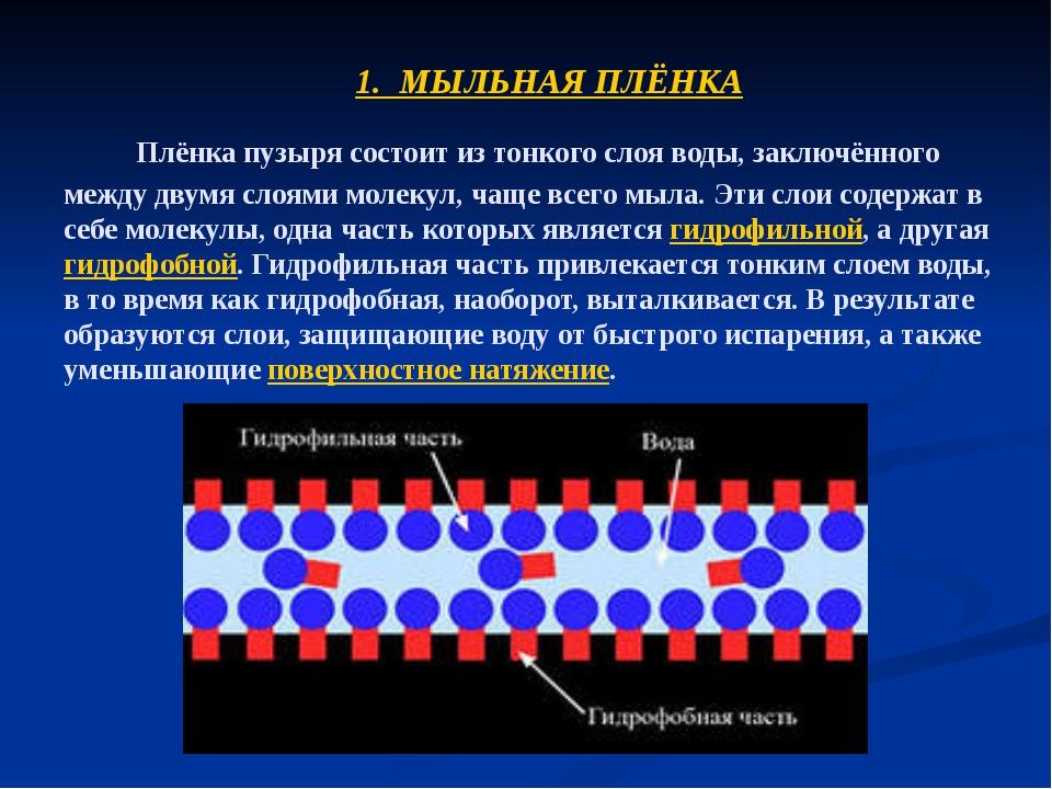 Плёнка пузыря состоит из тонкого слоя воды, заключённого между двумя слоями...