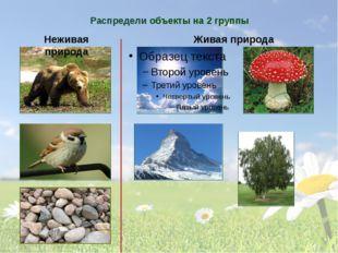 Распредели объекты на 2 группы Неживая природа Живая природа Подумай, на каки