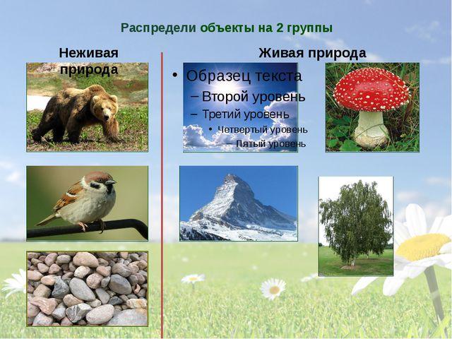 Распредели объекты на 2 группы Неживая природа Живая природа Подумай, на каки...