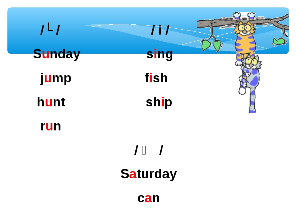 /ʌ / / i / Sunday sing jump fish hunt ship run / ӕ / Saturday can