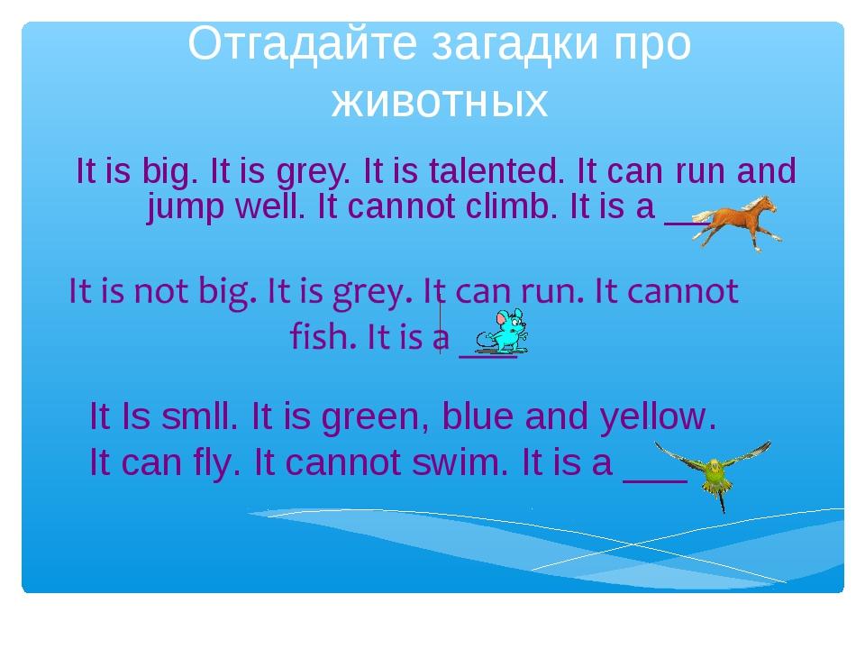 Отгадайте загадки про животных It is big. It is grey. It is talented. It can...