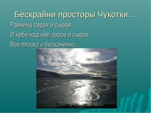 Бескрайни просторы Чукотки… Равнина серая и сырая. И небо над ней серое и сыр