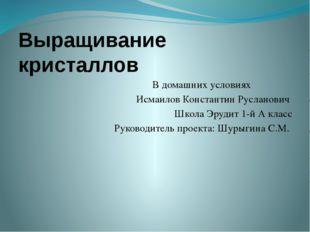 Выращивание кристаллов В домашних условиях Исмаилов Константин Русланович Шко