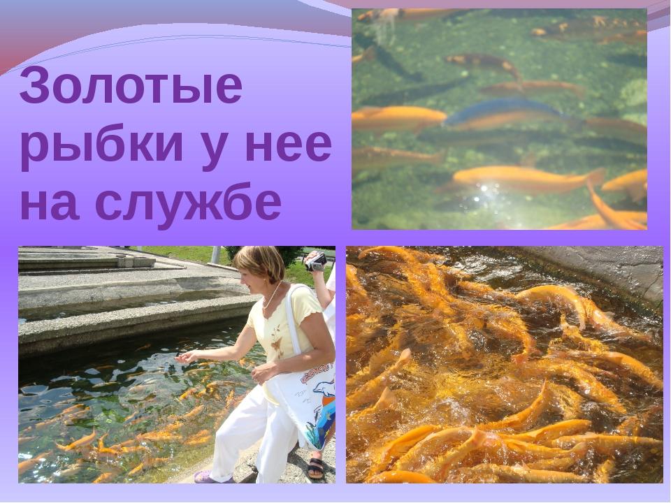 Золотые рыбки у нее на службе