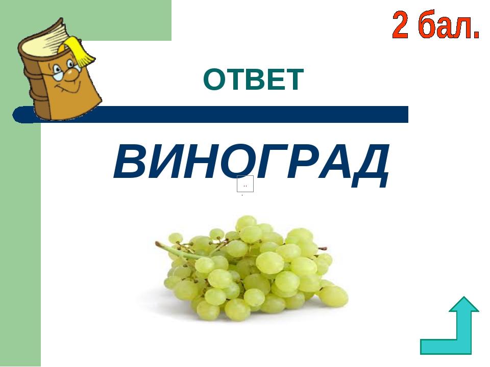 ОТВЕТ ВИНОГРАД