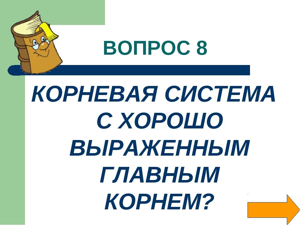 ВОПРОС 8 КОРНЕВАЯ СИСТЕМА С ХОРОШО ВЫРАЖЕННЫМ ГЛАВНЫМ КОРНЕМ?