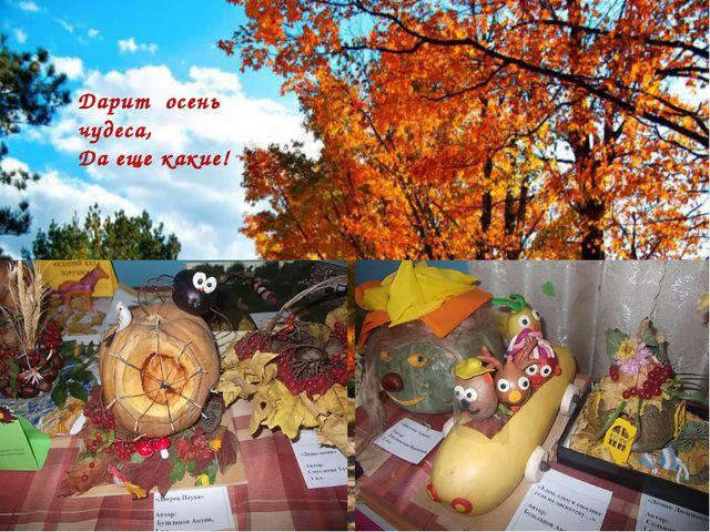 Дарит осень чудеса, Да еще какие!