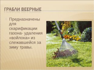 Предназначены для скарификации газона- удаления «войлока» из слежавшейся за з