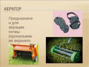 Предназначен для аерации почвы (прокалывание верхнего слоя почвы)