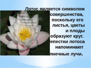 Лотос является символом совершенства, поскольку его листья, цветы и плоды обр