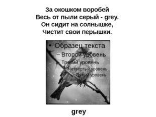 За окошком воробей Весь от пыли серый - grey. Он сидит на солнышке, Чистит св