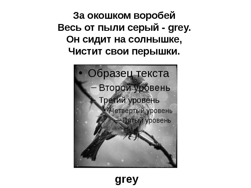 За окошком воробей Весь от пыли серый - grey. Он сидит на солнышке, Чистит св...