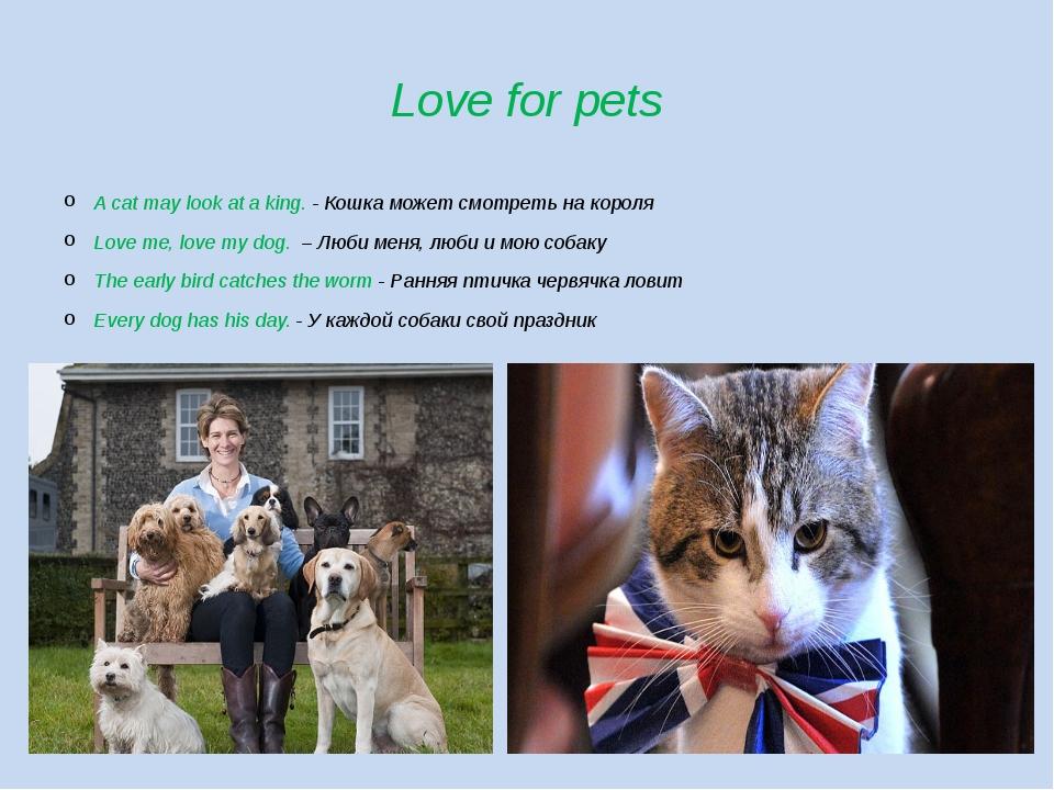 Love for pets A cat may look at a king. - Кошка может смотреть на короля Love...
