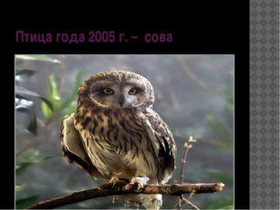 Птица года 2005 г. – сова