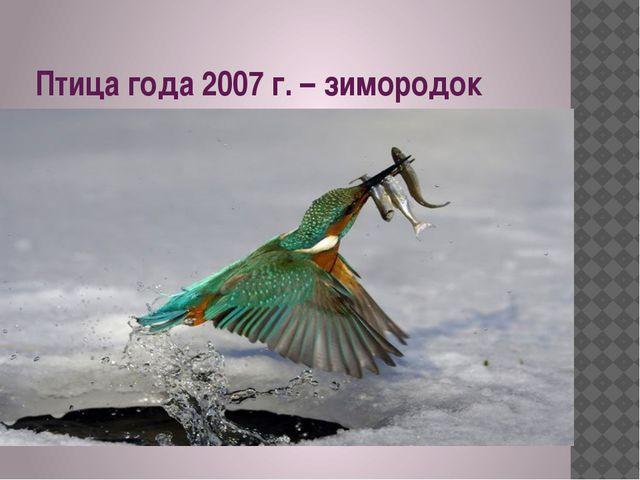 Птица года 2007 г. – зимородок