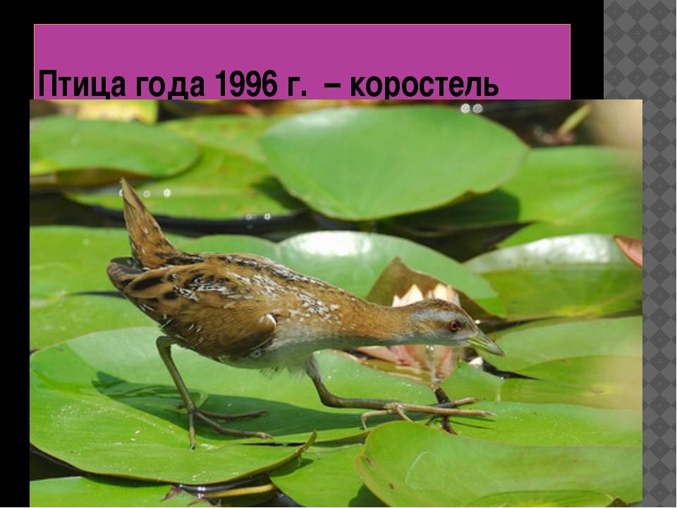 Птица года 1996 г. – коростель