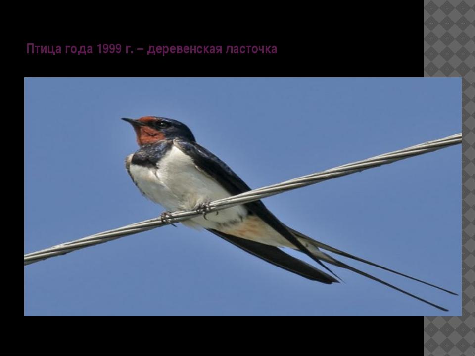 Птица года 1999 г. – деревенская ласточка