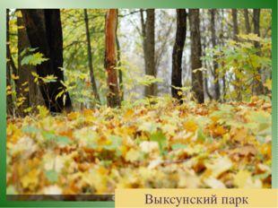 Выксунский парк
