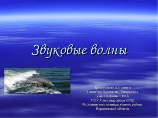 Звуковые волны Презентацию выполнила Глущенко Валентина Дмитриевна учитель фи