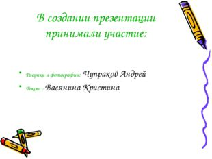 В создании презентации принимали участие: Рисунки и фотографии: Чупраков Андр