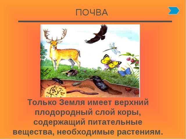 ПОЧВА Только Земля имеет верхний плодородный слой коры, содержащий питательны...
