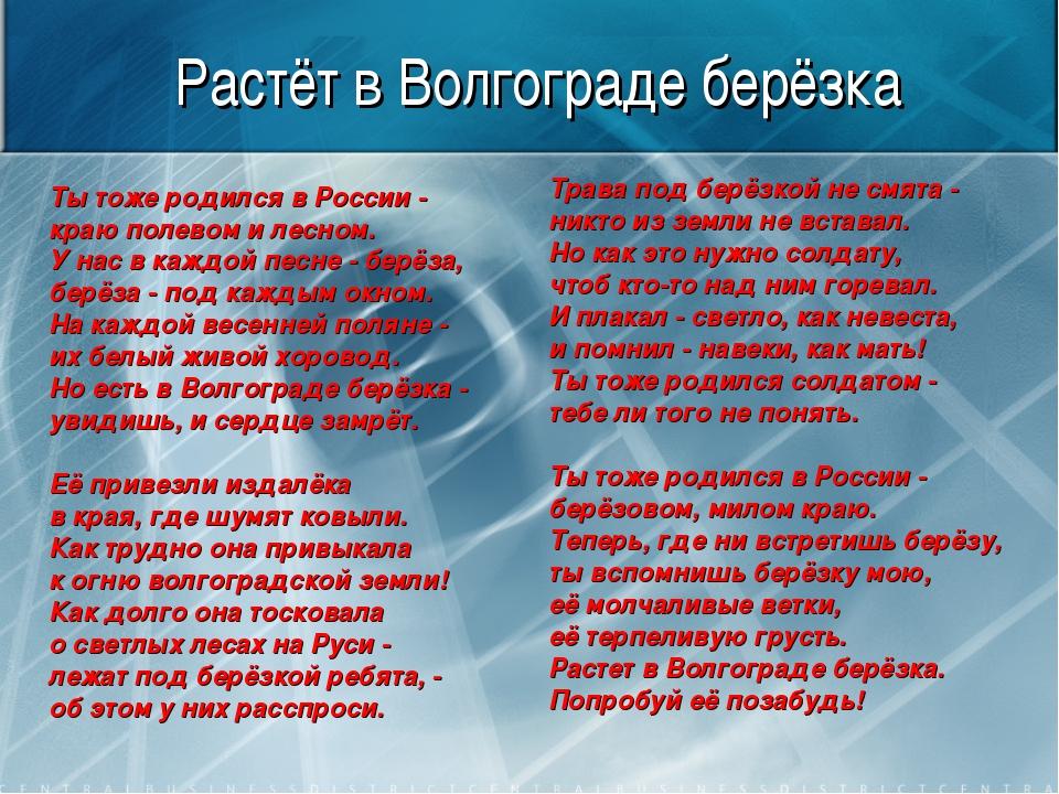 Растёт в Волгограде берёзка Ты тоже родился в России - краю полевом и лесном....