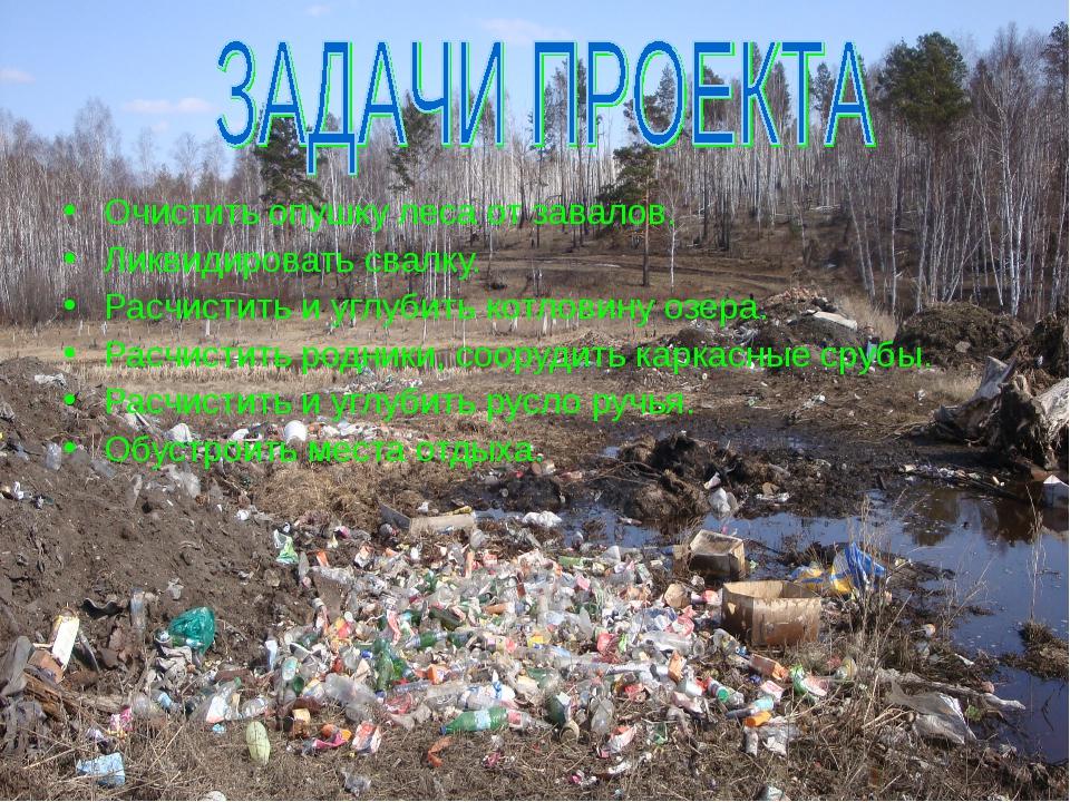 Очистить опушку леса от завалов. Ликвидировать свалку. Расчистить и углубить...
