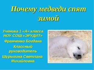 Почему медведи спят зимой Ученика 1 «А» класса НОУ СОШ «ЭРУДИТ» Франченко Бог