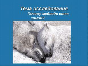 Тема исследования Почему медведи спят зимой?