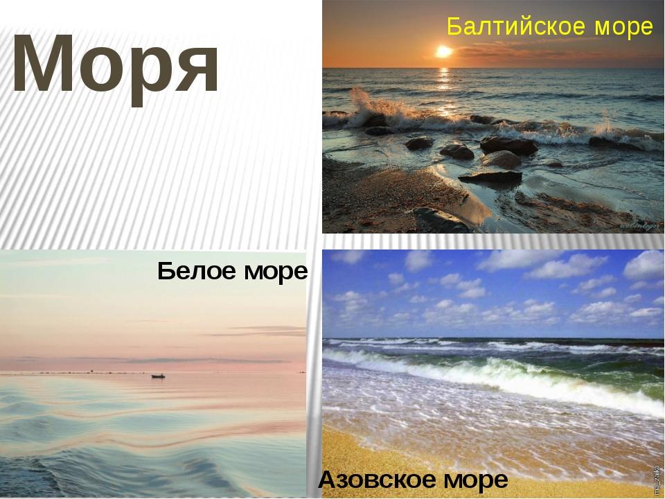 Моря Балтийское море Азовское море Белое море