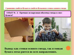 Сравнение свойств бумаги и свойств бумажных стенок осиного гнезда Вывод: как