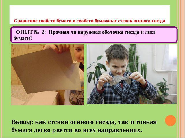 Сравнение свойств бумаги и свойств бумажных стенок осиного гнезда Вывод: как...