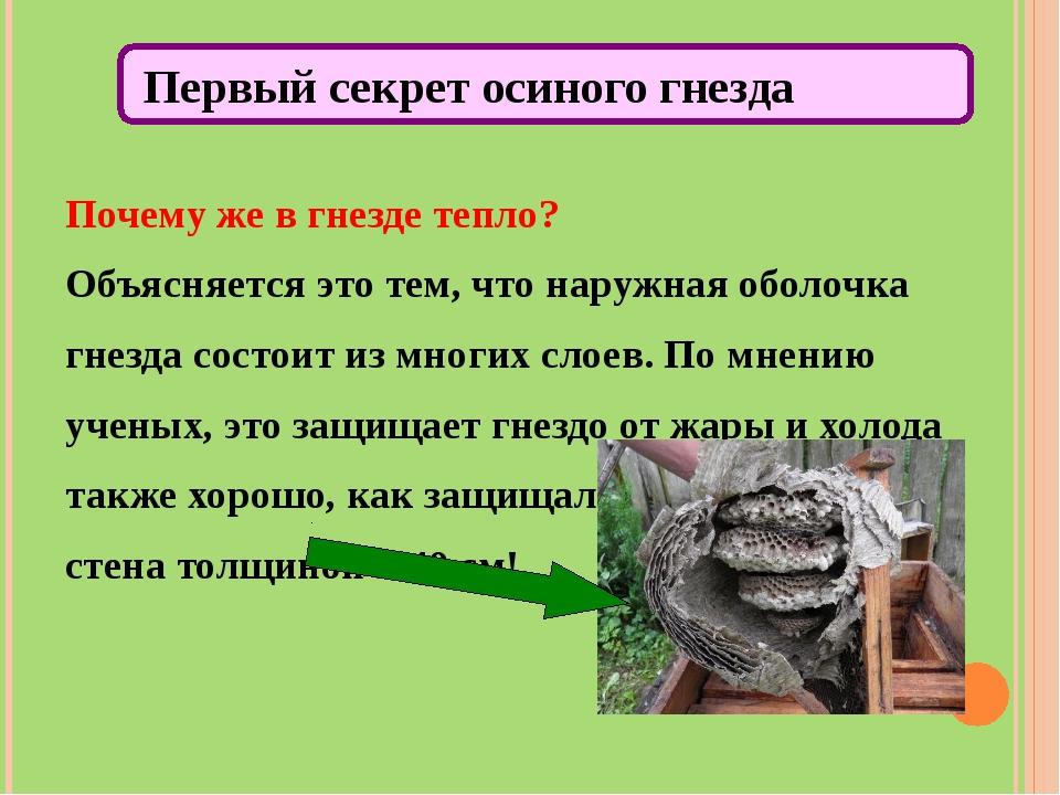 Почему же в гнезде тепло? Объясняется это тем, что наружная оболочка гнезда с...