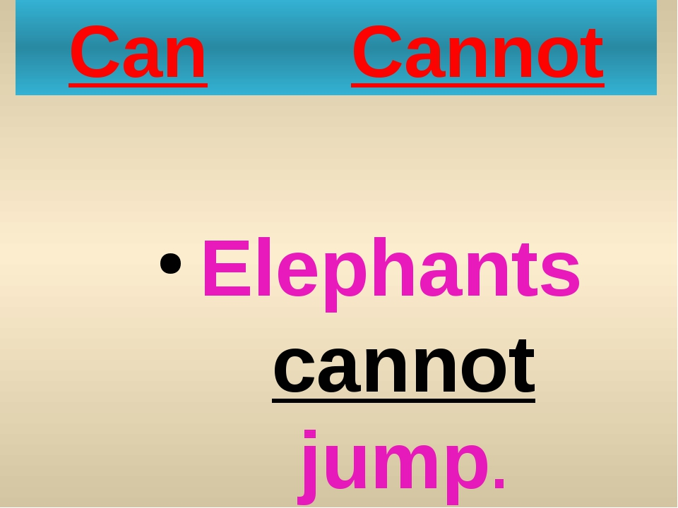 Can Cannot Elephants cannot jump.