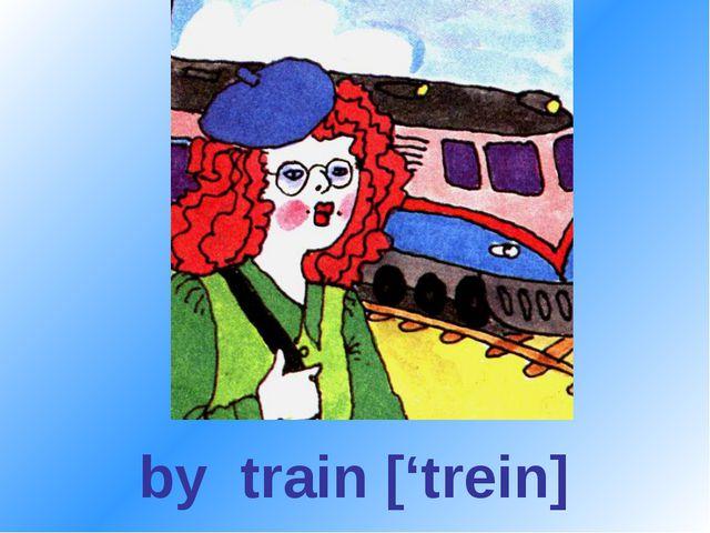 by train ['trein]